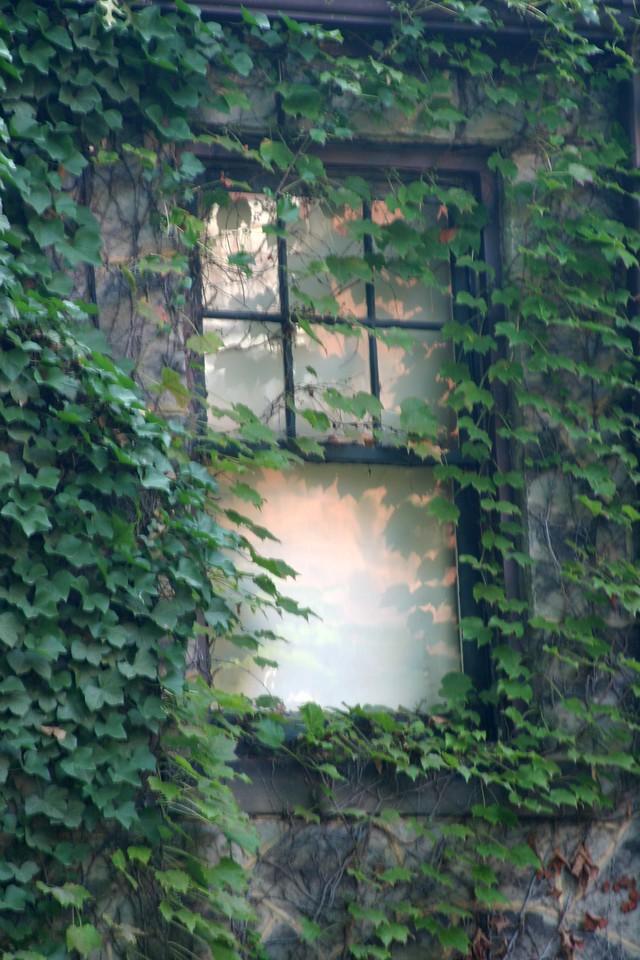 Window Next Door Pennsylvania, USA