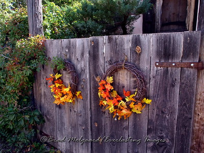 """Harvest Gate"" - Lincoln, NM"