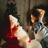 Dosha Family Santa Portraits-17