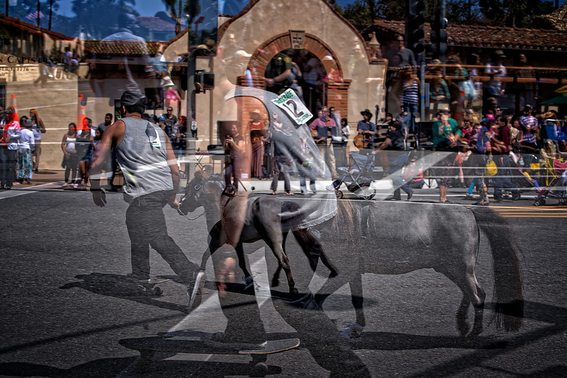 Skateboading Pigmy Ponies