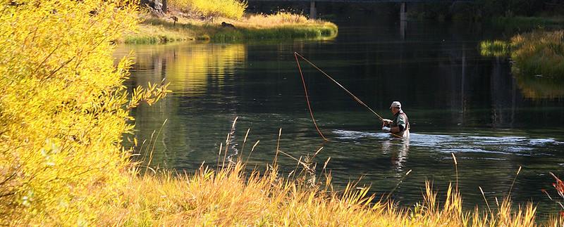 xFly fishing 1