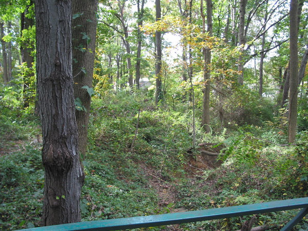 Douglas Park 18-Oct 22-03