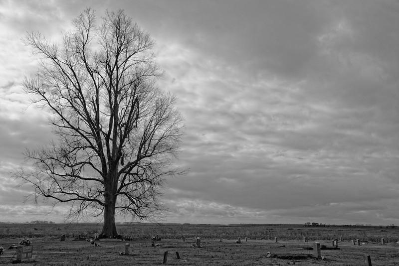 Eternity - Cemetery on Highway 264