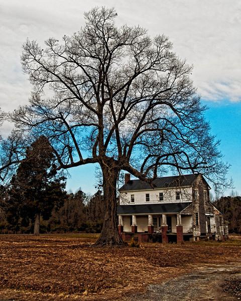 House near Martin County Airport, Everetts, NC