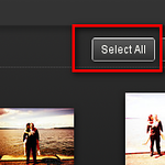 "Choose the ""Select All"" from the upper right hand, and all your photos will have a (blue) highlight on 'em."