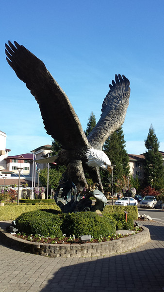 Several views of the eagle in front of the Seven Feathers casino.