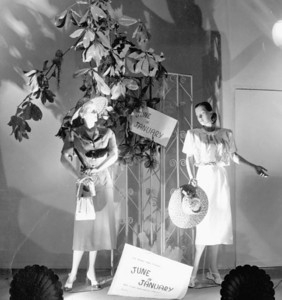 A display window of Furchgott's in 1948. Photo by Jack Spottswood. Courtesy of State Archives of Florida, Florida Memory, http://floridamemory.com/items/show/51261
