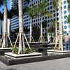 downtownMIA 069
