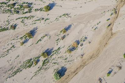 Sparse Sand Desert