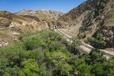 Wilderness Railroad Track
