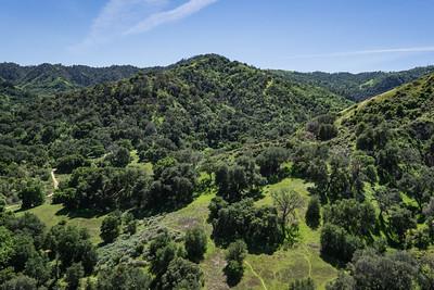 California Green Hills