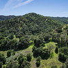 California Green Hills
