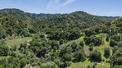Walking Trail in California Wilderness