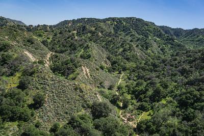California Green Wilderness