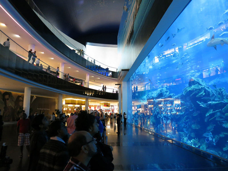 The world's largest single aquarium window in the world. . . right in the middle of a mall.