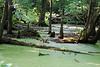 Duck Creek 0023