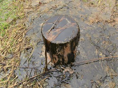 #4 Abandoned well.