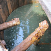Emerald green crude oil in storage tank. The landowner said this tank recently, failed, sending the contents downstream.