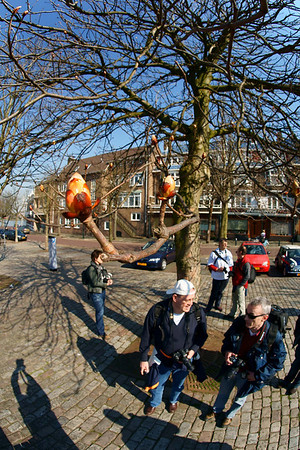 DDM Dordrecht 2009