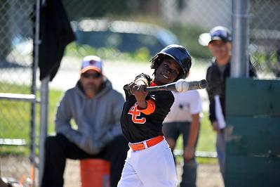 ECYB Orioles Misc Pics