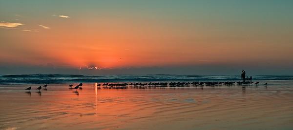"""Early Bird Sunrise""  ETC3011 (NV6827)"