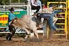 Bull Riding-9