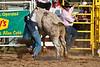 Bull Riding-12