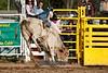 Bull Riding-7