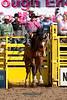 Saddle Bronc-7