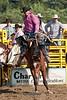 Saddle Bronc-10