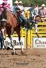 Saddle Bronc-4