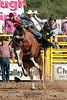 Saddle Bronc-3