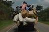 Rural road, Uganda.
