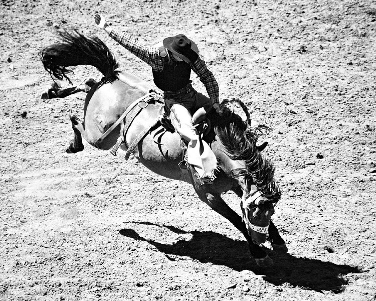 Bronco rider at the Stampede rodeo in July 2002.  Another early film photo.