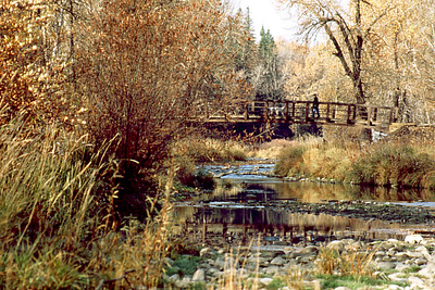 This is a picture Cly took for a photography class in Fish Creek Park. Cly took two other shots at different focal lengths and decided to wait until he could capture somone actually on the bridge for a third. He was lucky to get a man and a dog.