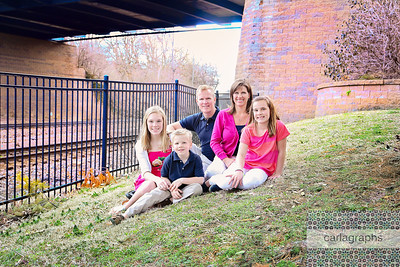 Fam Under Bridge 2 (1 of 1)