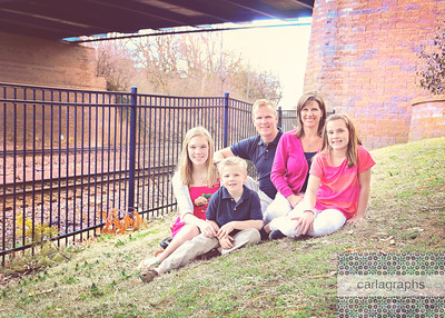 Fam Under Bridge 2, cropped hazy (1 of 1)