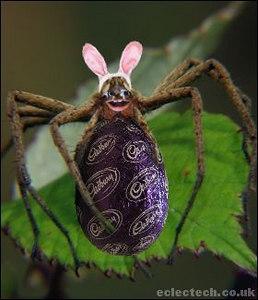 easter spider