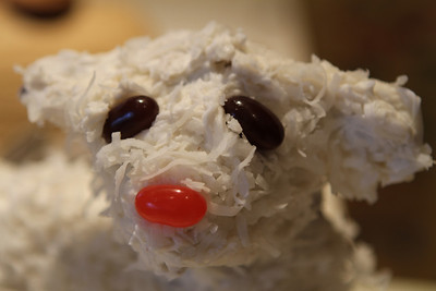 Lamby…survived the ride. Awaiting his fate at dessert time.