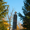 Maple Leaf carving at Lake Hughes