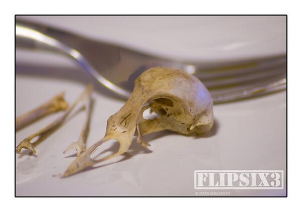 Bird Food #2
