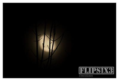 Lunar Silhouette