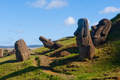 A number of the Moai just outside of the Rano Raraku quarry are partially buried to their shoulders.  These Moai are distinctive in that their eye sockets were not hollowed out to receive the coral eyes, nor do they have the Pukao topknot stones.  These Moai were not cast down during the Huri Moai (statue toppling) of the island's civil wars.  TQ 2010 memory book image 8 of 11