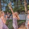 The_Edens_Wedding-444
