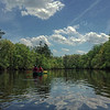 Edisto River View I