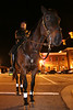 Columbia Police Dept. Mounted Patrol