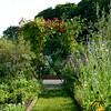 Gartenweg im Juni