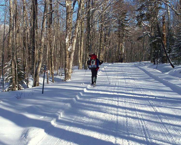 X-C Skiing to Edmands Path