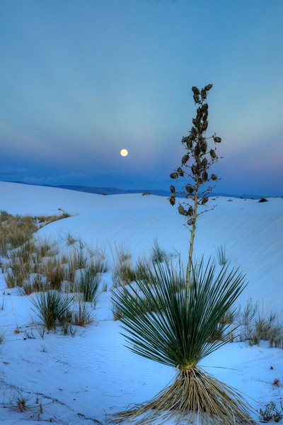 Blue Moon over white sands
