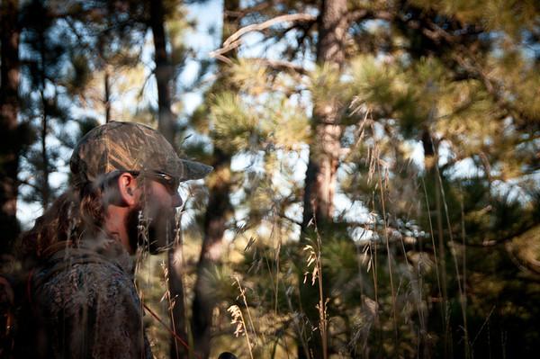 Elk Season 2013